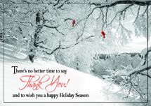 Glorious Thanks Holiday Cards